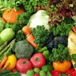 健康飲食 知易行難的原因是?