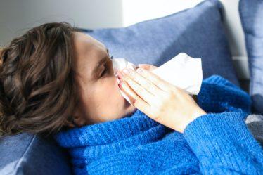 鼻敏感發作好困擾!好物助你紓緩鼻塞